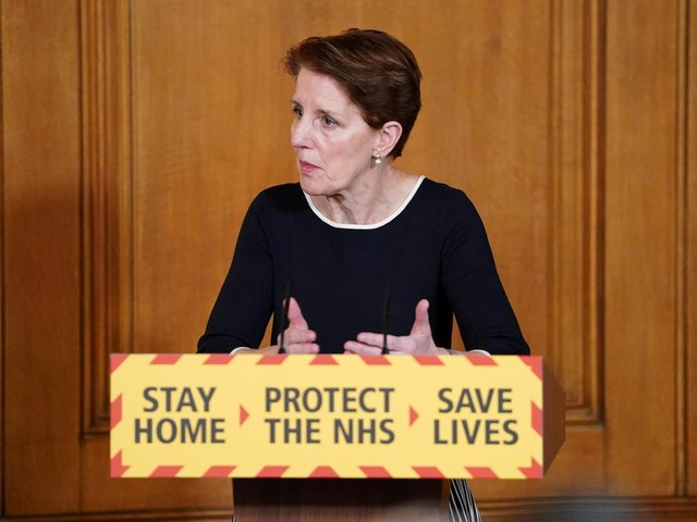 Medical Director at Public Health England Professor Yvonne Doyle speaking during a media briefing in Downing Street, London, on coronavirus (COVID-19). Photo: PA