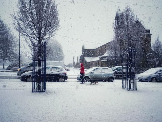 A lone pedestrian braves the snow this morning on Starbeck High Street in Harrogate. (Picture by Stuart Rhodes)