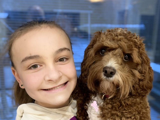 Children's Mental Health Week - Ashville College Year 7 pupil Emilia Peers-Alton with her Cavapoo, Lottie. This photo was one of many submitted for the year group's 'Pets at Home' activity.