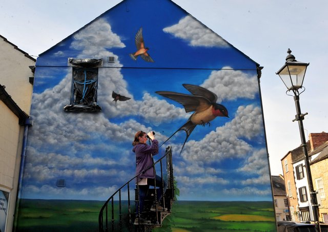 22nd March 2021Pictured local resident and bird watcher Katie Plowright-Hall takes a look at the swallow mural on the side of a building in Cheapside, KnaresboroughPicture Gerard Binks