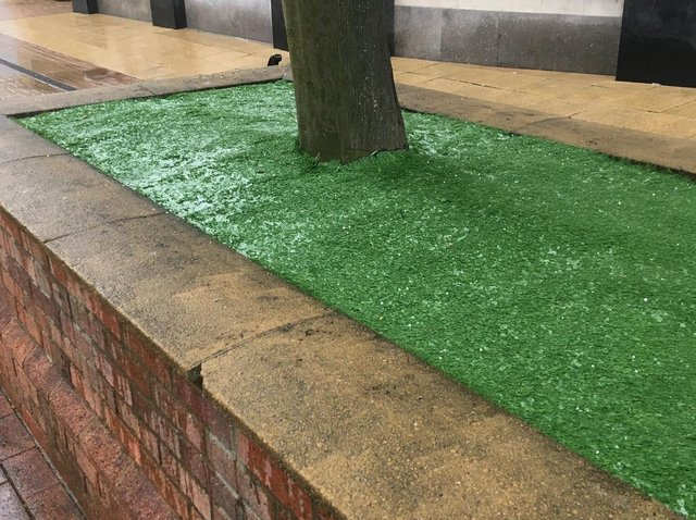 The artificial grass in raised flower beds on Cambridge Street.