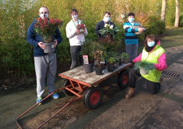 Art makers from Henshaws Arts and Crafts Centre with some of the £600 worth of plants donated by Johnsons of Whixley.