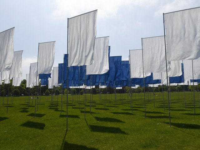 Take a look through these stunning images of the In Memoriam installation on the Stray.