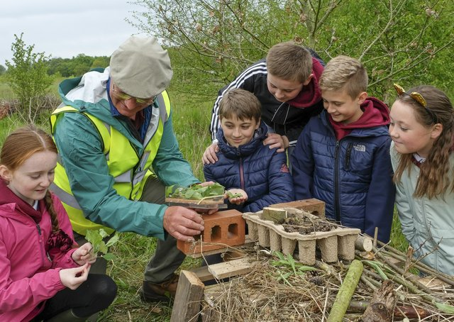 Children from Boroughbridge Primary School in North Yorkshire enjoy a field trip to the Woodmeadow Trust site near Escrick, York. pic mike cowling may 20 2021