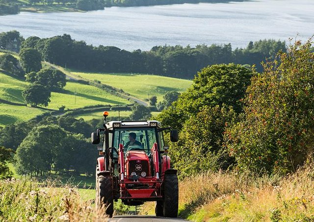 Grants available to Nidderdale farmers. Picture: Paul Skirrow